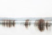 © eel-fotografie | fotografie - bildagentur